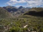 Buchu Koppie Hiking Trail