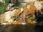 The little rock pool